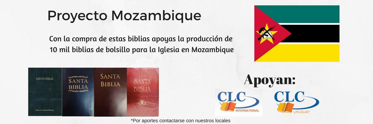 3 Biblia CLC Letra Grande