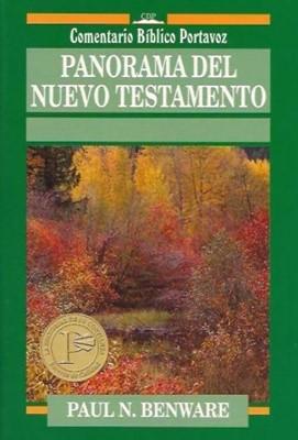 Panorama Del Nuevo Testamento (Tapa Rústica) [Libro]
