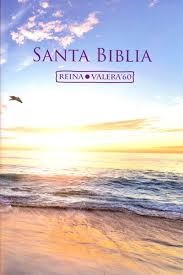 Biblia CLC Rústica Playa (Tapa Rústica) [Biblia]