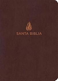 Biblia NVI Manual Letra Grande Marron (Tapa Suave) [Biblia]