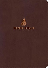 Biblia NVI Letra Gigante Marrón (Tapa Suave) [Biblia]