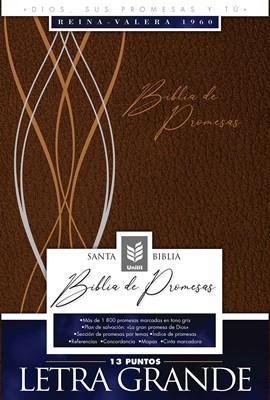 Biblia de Promesas Letra Grande Piel Especial Café Moderno (Tapa Suave)