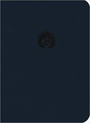 Biblia de La Reforma Azul (Tapa Suave)
