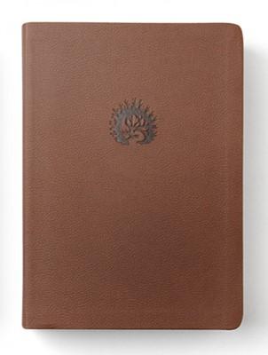 Biblia de la Reforma Simil Piel Cáfe (Tapa Suave)