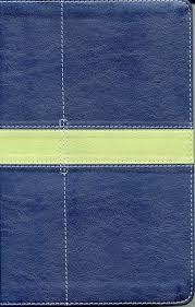 Biblia NVI UN DIA A LA VEZ Mujeres Imitación Piel Azul (Tapa Suave)