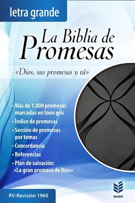 Biblia de Promesas Letra Grande (Piel especial negra con detalles) [Biblia]