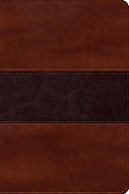 Biblia del Pescador Letra Grande Símil Piel Caoba (Tapa Suave)