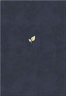Biblia NVI Palabras de Aliento Azul (Tapa Suave)