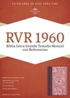 Biblia Letra Grande RVR60 Borravino y Rosado