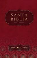 Biblia RVR60 Letra Grande Vinil