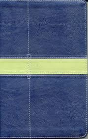 Biblia NVI UN DIA A LA VEZ Mujeres Imitación Piel Azul
